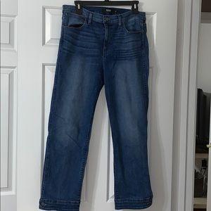 Hudson Nico cigarette Cropped jean